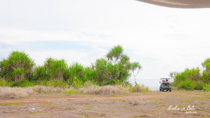 峇里島自由行,峇里島自助,峇里島必買,峇里島行程,鈦美峇里島,啾啾峇里島,藍夢島,藍夢島海底漫步,藍夢島行程,藍夢島費用